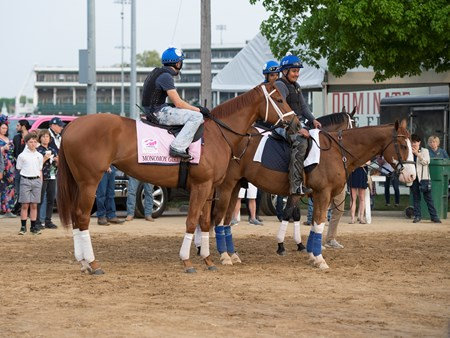 Monomoy Girl Morning scenes on May 3, 2018 Churchill Downs in Louisville, Ky.