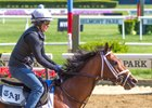 Audible trains May 25 at Belmont Park