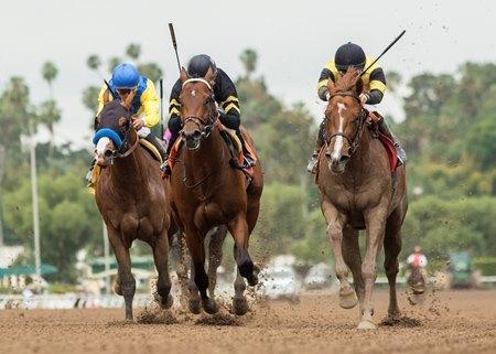 Kanthaka Gets The Trip Victory In Lazaro Barrera Bloodhorse