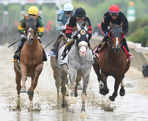 The Dixie Stakes, won by Fire Away, was taken off the turf and run on the main track at Pimlico Race Course