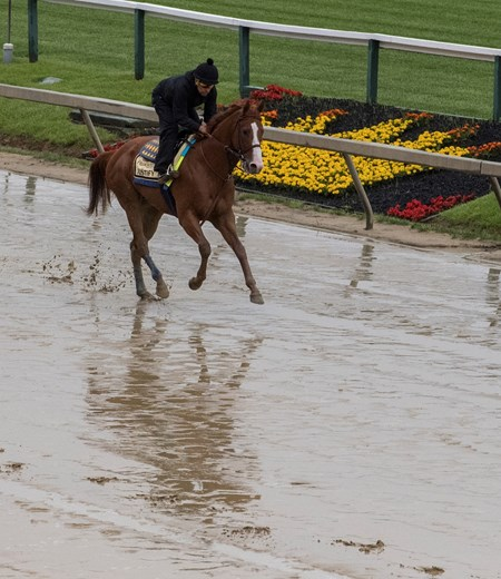 Kentucky Derby winner Justify gallops in the mud at Pimlico Race Course in preparation for Saturday's Preakness Stakes Thursday May 17, 2018 in Baltimore, MD