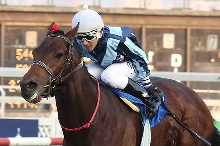 Top Casablanca is back to defend his title in the Hipico Falabella