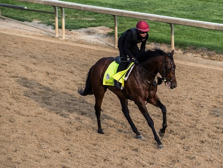 Mendelssohn makes his first appearance at Churchill Downs