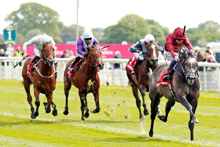 Roaring Lion wins the Betfred Dante Stakes May 17 at York