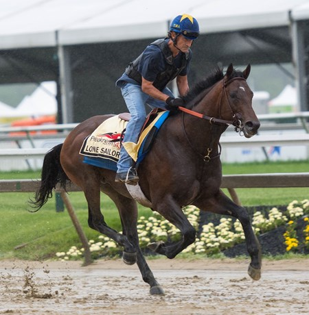 Lone Sailor trains at Pimlico in preparation for the Preakness on Thursday May 17th, 2018
