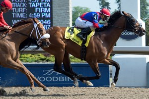 Are You Kidding Me holds off Melmich to win the Eclipse Stakes at Woodbine