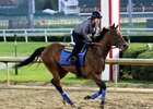 Abel Tasman gallops under Dana Barnes May 1 at Churchill Downs