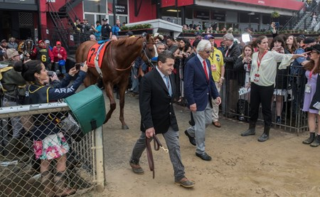 Justify with trainer Bob Baffert and assistant trainer Jim Barnes heads to the track for the 143rd running of the Preakness Stakes May 19, 2018 in Baltimore, MD