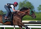 Bolt d'Oro works May 28 with Declan Cannon in the irons at Keeneland