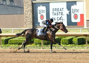 Shotgun Kowboy wins the Lone Star Park Handicap by 1 1/2 lengths at Lone Star Park