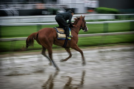 Justify - Pimlico - May 17, 2018