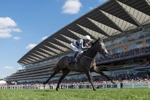 Alpha Centauri turned the Coronation Stakes into a one-horse show.