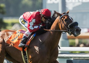 Storm the Hill wins the Wilshire Stakes