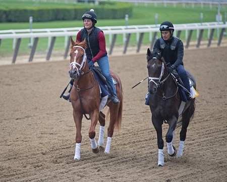 l-r, Vino Rosso and Noble Indy  Morning scenes on June 7, 2018 at Belmont Park in Elmont, New York.