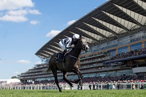 Alpha Centauri, with Colm O'Donoghue up, wins the Coronation Stakes at Royal Ascot