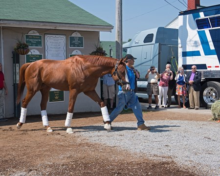 Justify with Eduardo Luna leaves for California via Brook Ledge and H. E. Tex Sutton Jan. 16, 2016 Churchill in Louisville, Kentucky.