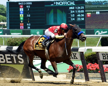 Abel Tasman with jockey Mike Smith wins the 88th running of The Grade 1 Ogden Phipps at Belmont Park Saturday June 9, 2018