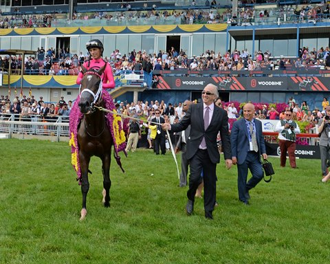 Wonder Gadot Named Canada's Horse of the Year