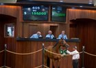 A Beau Choix filly consigned as Hip 605 sells for $155,000 at the OBS June 2-year-olds in training sale