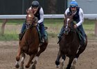 Hofburg (outside) works with Good Samaritan on the Oklahoma training track at Saratoga Race Course
