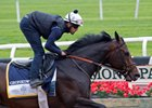 Gronkowski gallops June 7 at Belmont Park
