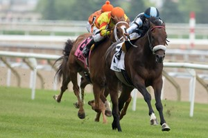 Shahroze wins the Singspiel Stakes at Woodbine