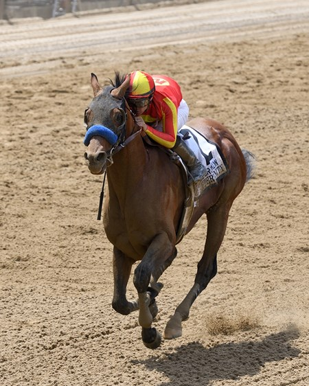 Hoppertunity wins 2018 Brooklyn Invitational Stakes at Belmont Park June 9, 2018.