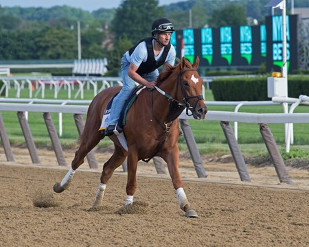 Hofburg Morning training on June 6, 2018 at Belmont Park in Elmont, New York.