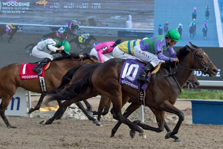 Gamble's Ghost under Jockey Eurico Da Silva, capture the $100,000 Trillium Stakes at Woodbine Racetrack for owner Ivan Dalos and trainer Josie Carroll. Toronto, Ontario.