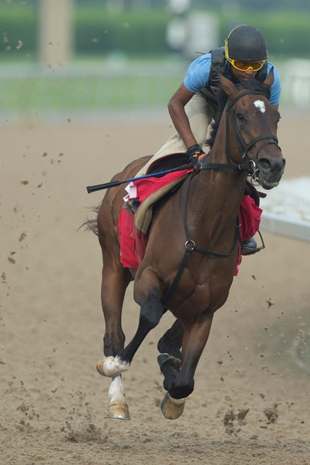 Wonder Gadot - Woodbine, June 6, 2018
