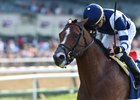 Oscar Performance wins the Poker Stakes at Belmont Park