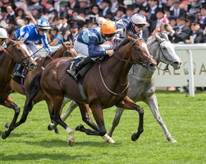 Accidental Agent wins Queen Anne Stakes