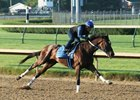 Belmont Stakes contender Tenfold works at Churchill Downs