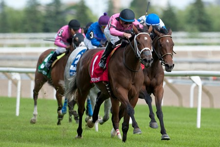 Alywow Stakes.Road to Victory under jockey Gary Boulanger captures the Alywow Stakes for owner Gary Barber and John C. Oxley and trainer Mark Casse at Woodbine Racetrack SAturday, June 9, 2018 in Toronto, Ontario.