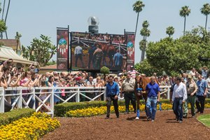 Justify in the Santa Anita walking ring June 23