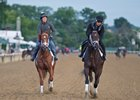 Vino Rosso (left) and Noble Indy will each aim to give Todd Pletcher his fourth Belmont Stakes win
