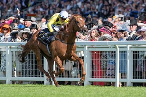 Ostilio captures the Brittannia Stakes at Royal Ascot