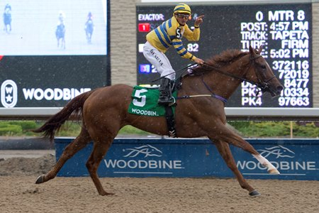 Pink Lloyd wins the Achievement Stakes at Woodbine