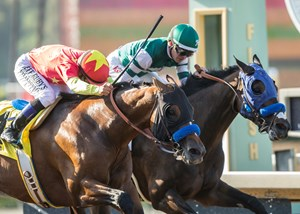 American Anthem (outside) just holds off St. Joe Bay in the San Carlos Stakes at Santa Anita Park