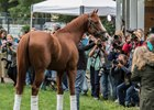 Justify will be the center of attention June 16 at Churchill Downs