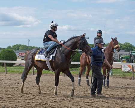Gronkowski schooling at the gate Morning training on June 6, 2018 at Belmont Park in Elmont, New York.