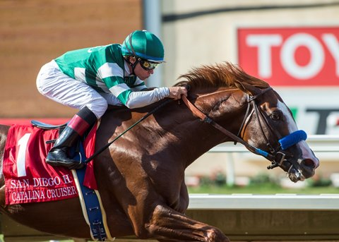 Catalina Cruiser to Lane's End After Breeders' Cup