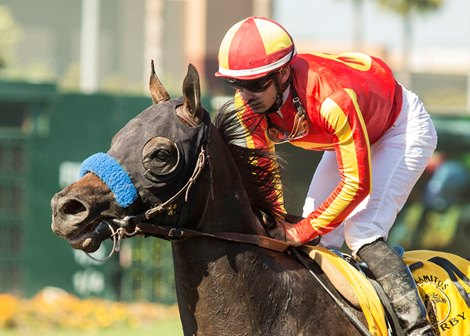 Los Alamitos Up In Overall Wagering New Pick 4 Bloodhorse