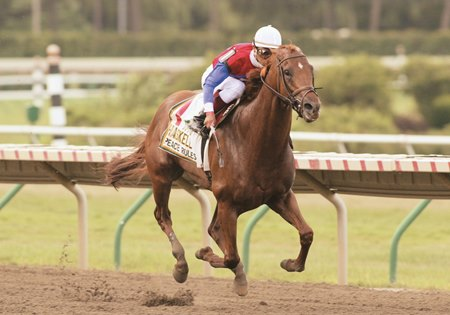 Funny Cide Peace Rules Rivalry To Be Renewed In New Orleans Cap