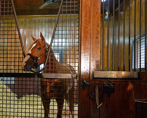 Justify S Stud Fee Set At 150 000 For 2019 Bloodhorse