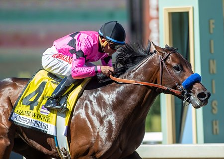 Game Winner Pulls Away In American Pharoah Bloodhorse