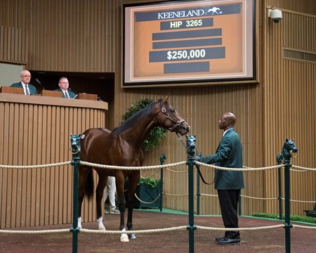 A Union Rags colt was the top seller during the 10th session of the Keeneland September Yearling Sale