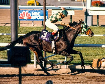 Breeders Cup Classic 1984 2017 Slideshow Bloodhorse