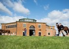 The sales ring built in 1965 provides the backdrop as yearlings are paraded at Tattersalls Book 1 yearling sales Newmarket 3.10.17
