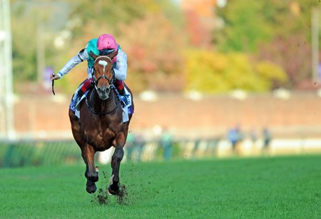 Enable Makes History With Brilliant BC Turf Win - BloodHorse